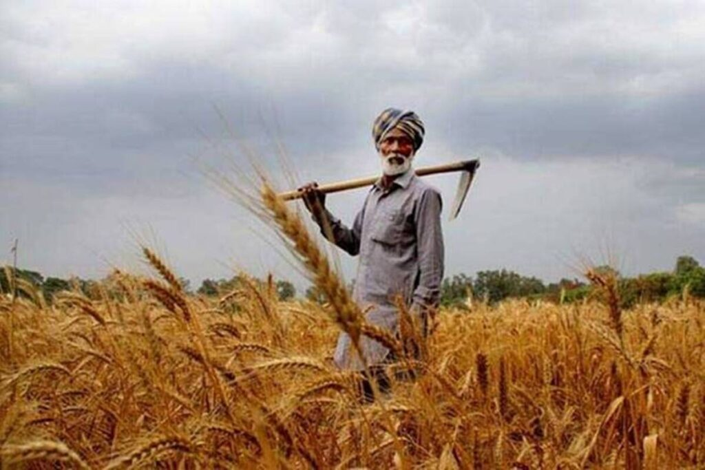 The PM-Kisan scheme, launched in February 2019 (made effective from December 2018) to give income support to farmers, cost the exchequer about Rs 1,241 crore in FY19, Rs 48,714 crore in FY20 and Rs 65,000 crore in (RE) FY21.